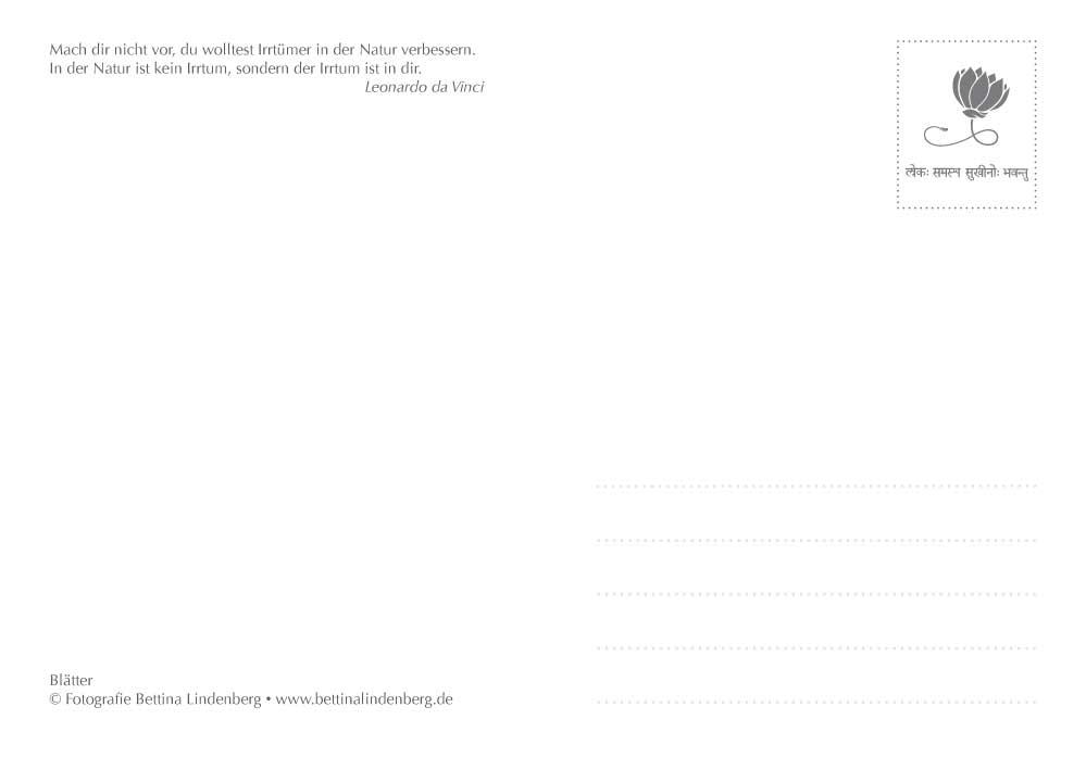Wildwuchs-Postkarten-A6-5-blaetter-2