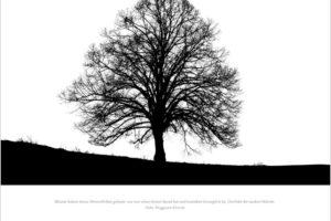 Bettina Lindenberg Fotokunst Kalender 2021